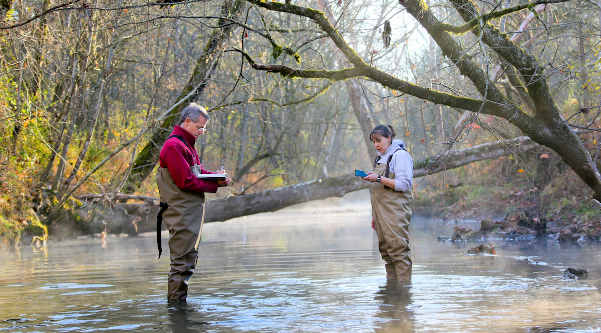 ORNL scientists Scott Brooks and Carrie Miller collecting water quality data, East Fork Poplar Creek.
