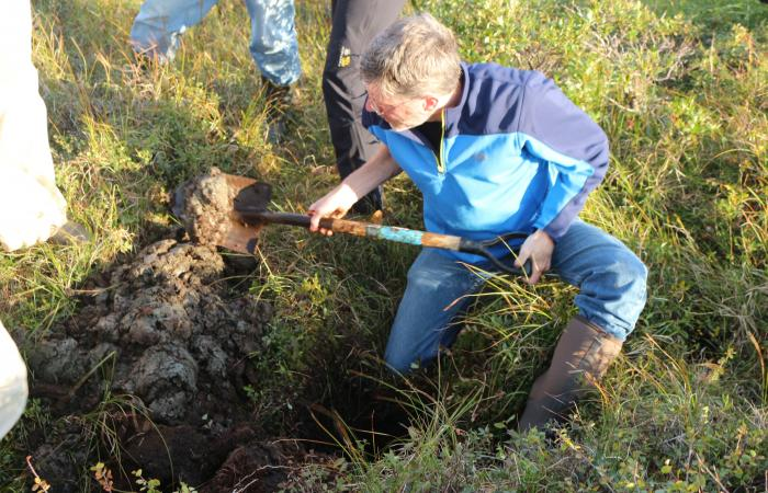 ORNL's Peter Thornton helps dig into saturated, anoxic soil on the Seward Peninsula.