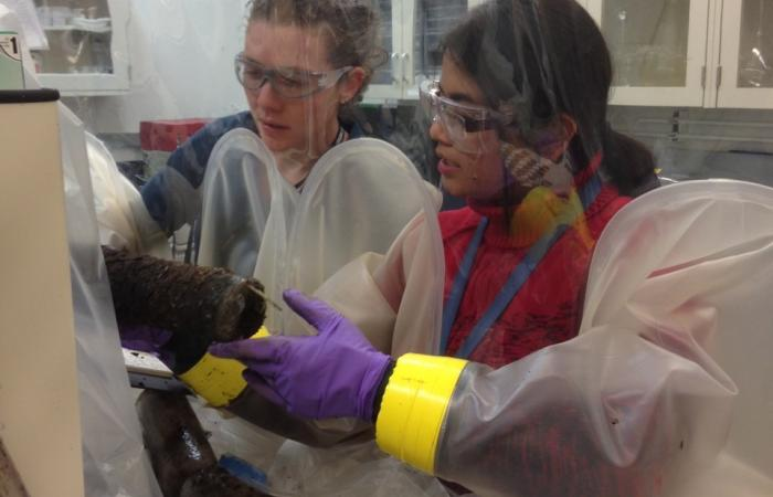 Former ORNL postdoctoral researchers Elizabeth Herndon and Taniya Roy Chowdhury work inside an anaerobic glove bag to process soils for anoxic incubations.