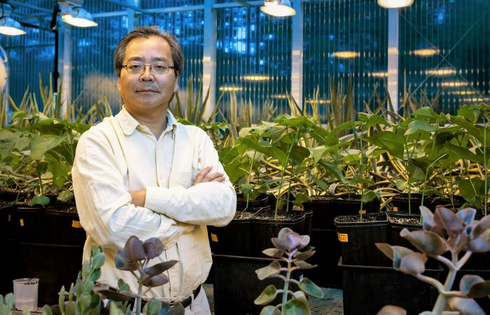 Lianhong Gu is an environmental scientist in the Ecosystem Science Group at ORNL.