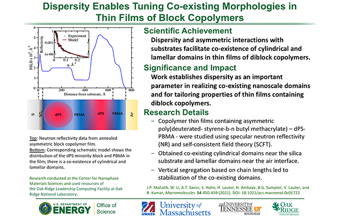 Dispersity Enables Tuning Co-existing Morphologies in Thin Films of Block Copolymers