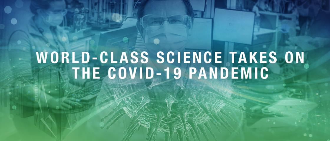 World-class science takes on the COVID-19 pandemic