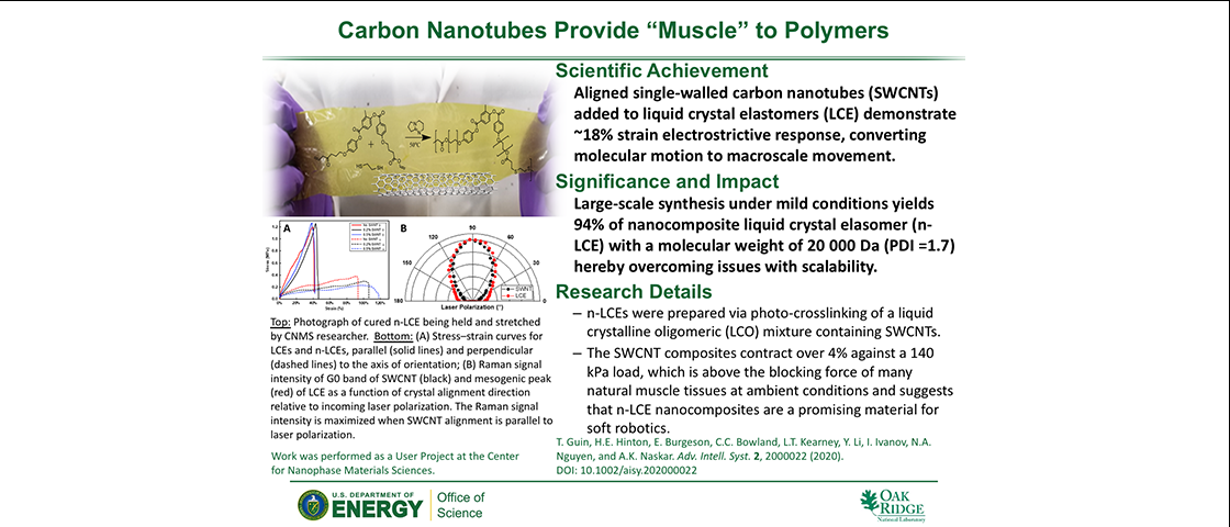 "Carbon Nanotubes Provide ""Muscle"" to Polymers"