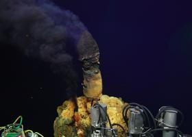 Deep-sea hydrothermal vent chimneys on Brother's Volcano's northwest caldera wall create a unique environment for microbes. Credit: Anna-Louise Reysenbach, NSF, ROV Jason and 2018 ©Woods Hole Oceanographic Institution