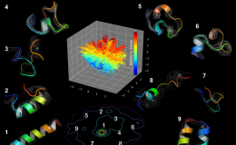Molecular dynamics simulations of the Fs-peptide revealed the presence of at least eight distinct intermediate stages during the process of protein folding. The image depicts a fully folded helix (1), various transitional forms (2–8), and one misfolded state (9). By studying these protein folding pathways, scientists hope to identify underlying factors that affect human health.