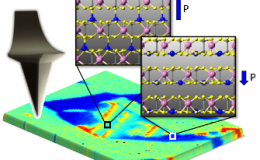 Piezoresponse force microscopy detects the co-existence of multiple polarization states in van-der-Waals layered CuInP2S6. Depending on the location of the Cu atoms (blue spheres), the piezoelectric properties of the material can be tuned.