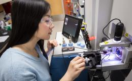 Weili Xiong collaborated on the mass spectrometry research while at ORNL as a postdoctoral associate.