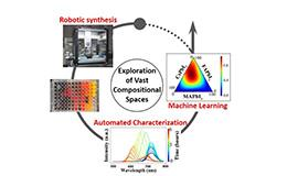 Chemical Robotics for Discovery of Metal Halide Perovskites