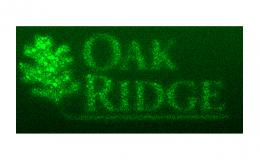 To direct-write the logo of the Department of Energy's Oak Ridge National Laboratory, scientists started with a gray-scale image.