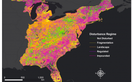 A stream classification system developed by ORNL researchers shows the influence of human activity on streams in the Eastern U.S. The map shows streams classified by their alteration status, highlighting the extent of networks that are impounded (magenta)