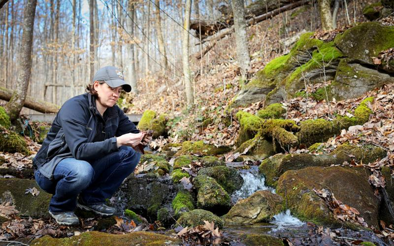 Natalie Griffiths kneeling in watershed at ORNL