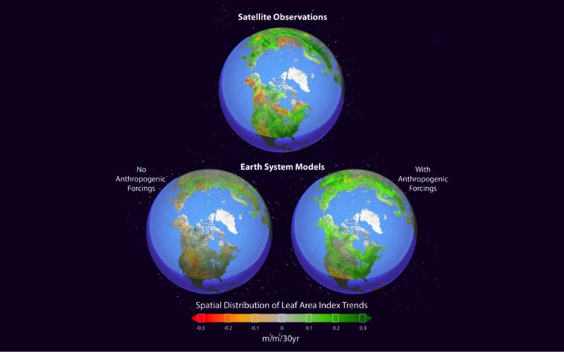 Earth system models simulate Northern Hemisphere greening.