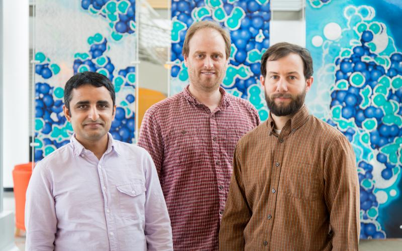 ORNL researchers have discovered a new type of quantum critical point, a new way in which materials change from one state of matter to another. Featured here are researchers Lekh Poudel (left), Andrew Christianson and Andrew May.